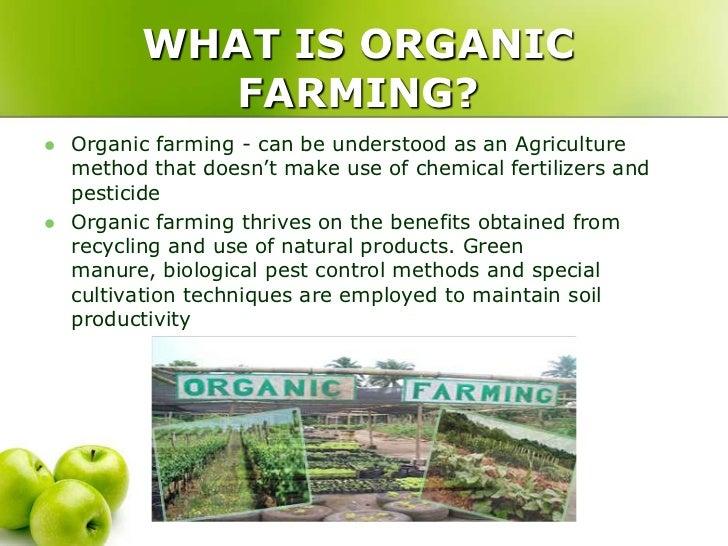 Economic Benefits Of Organic Food