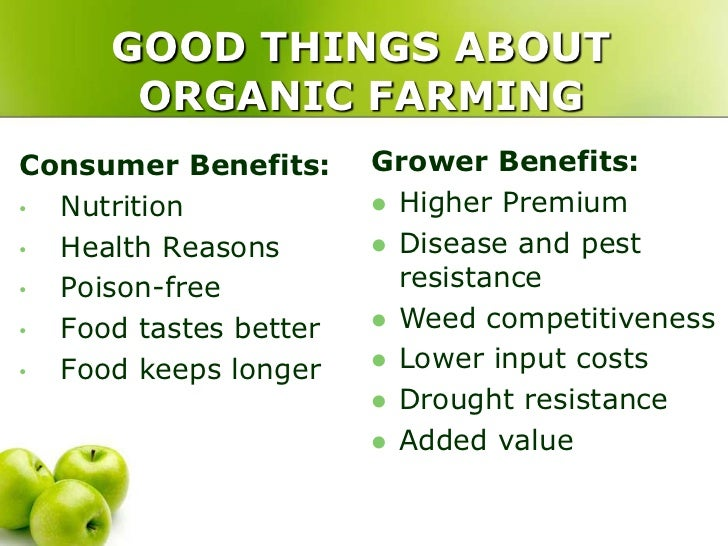Why Is Organic Food Better For Health