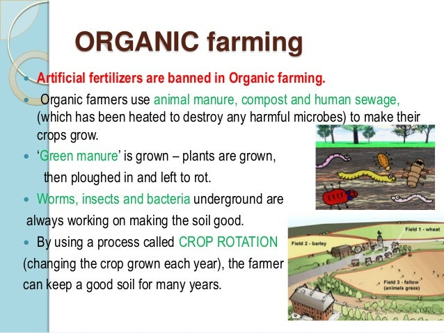 organic vs sustainable agriculture essay Organic agriculture and food security  • being sustainable in the long term organic agriculture should be an integral part of any agricultural policy.