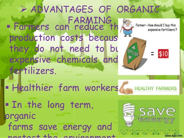 advantages and disadvantages of organic farming Consumers are demanding more organic food here are some of the pros and  cons of organic farming to consider.