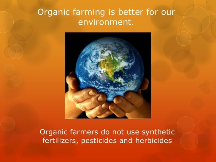 Knowledge About Natural And Organic Foods Paragraph