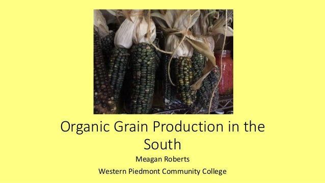 Organic Grain Production in the South Meagan Roberts Western Piedmont Community College