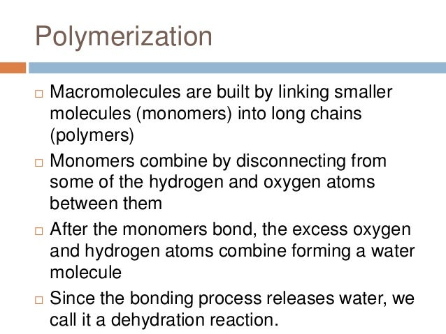 relationship between macromolecules and monomers in carbohydrates
