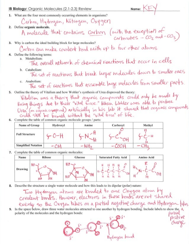 IB Organic Molecules Review Key (2.1-2.3)