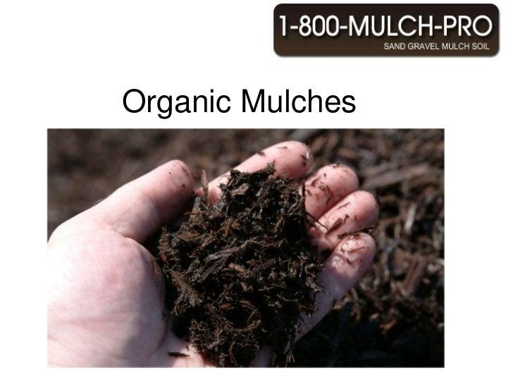 Organic Mulches <br />