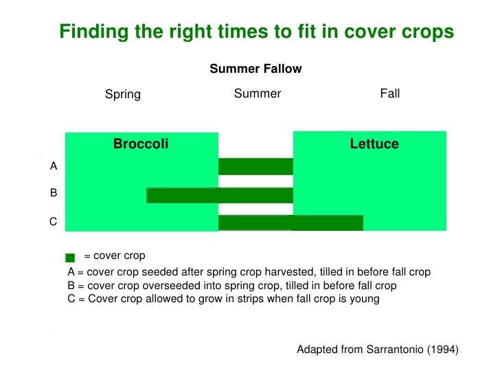 Organic Soil Management