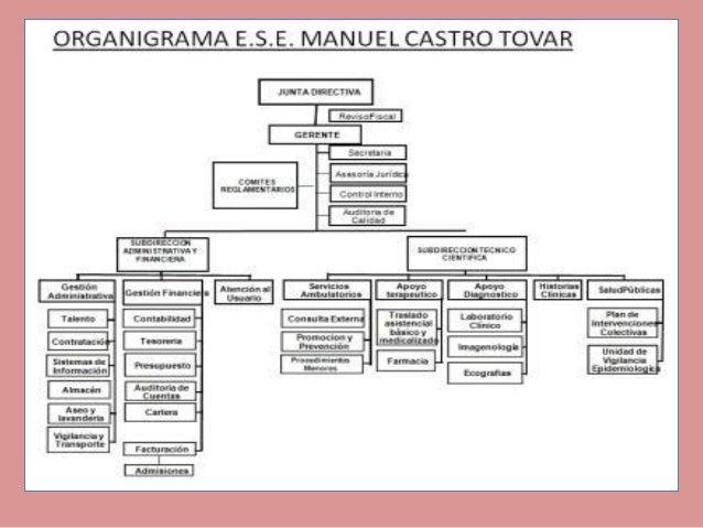 Organigrama 4