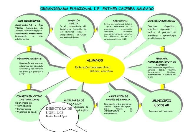 ORGANIGRAMA FUNCIONAL I.E. ESTHER CACERES SALGADO ALUMNOS Es la razón fundamental del sistema educativo SUB-DIRECCIONES Su...