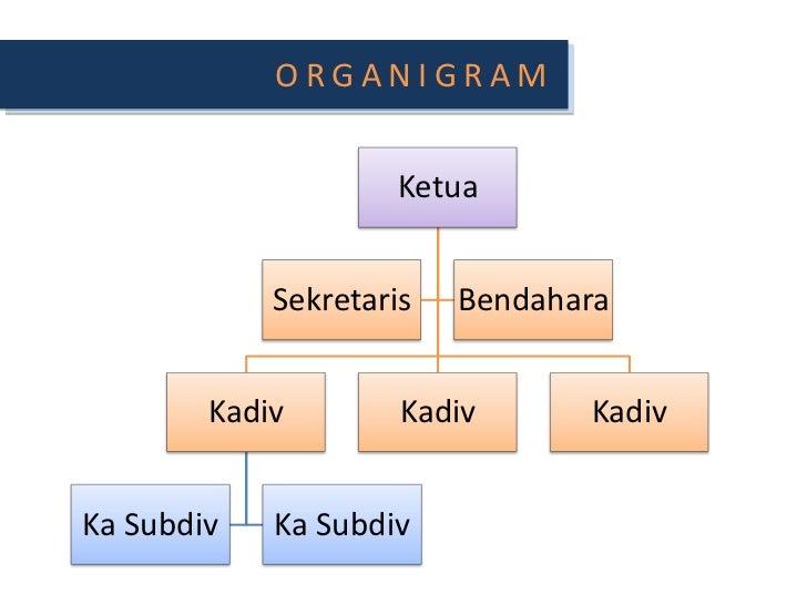 ORGANIGRAM<br />