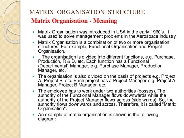 disadvantages bureaucratic management The pros and cons of bureaucratic organizations commerce essay the top level management has the total a numerous disadvantages too, the bureaucratic.