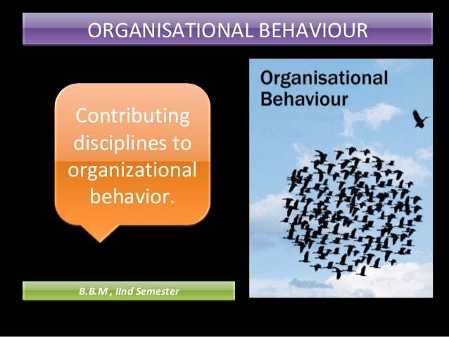 organisational behaviour trends Chapter 1 organizational behaviour 1 prof rajasshrie pillai 2 chapter content: introduction to organizational behaviour: definition, importance, scope, fundamental concepts of ob, different models of ob - autocratic, custodial, supportive, collegial and sobc.