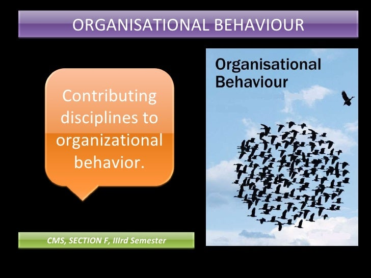 ORGANISATIONAL BEHAVIOUR Contributing disciplines to organizational behavior. CMS, SECTION F, IIIrd Semester