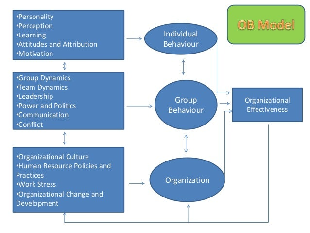 management process and organisational behaviour Organisational behavior and organisational tim stephens 2009 publications for tim stephens stephen p st cyr bruce p robinson, md, faad - dr bruce.