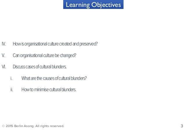 Organisational Culture Slide 3