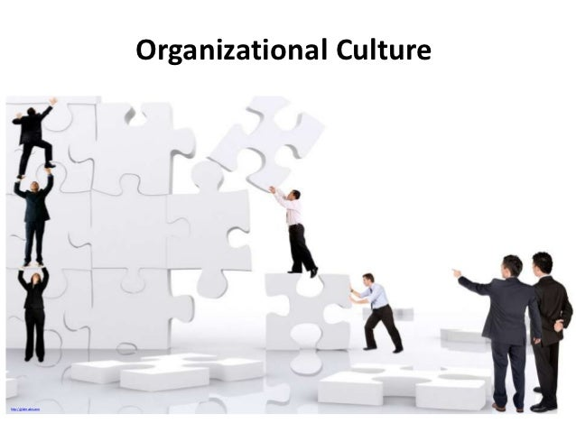 Organizational Culture & Employee Performance