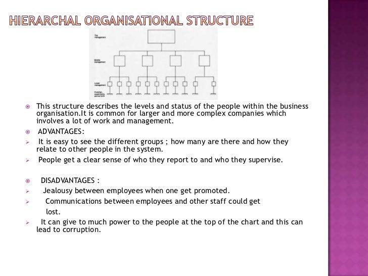 Organisational structure Slide 3