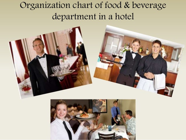 Organization chart of food & beverage department in a hotel