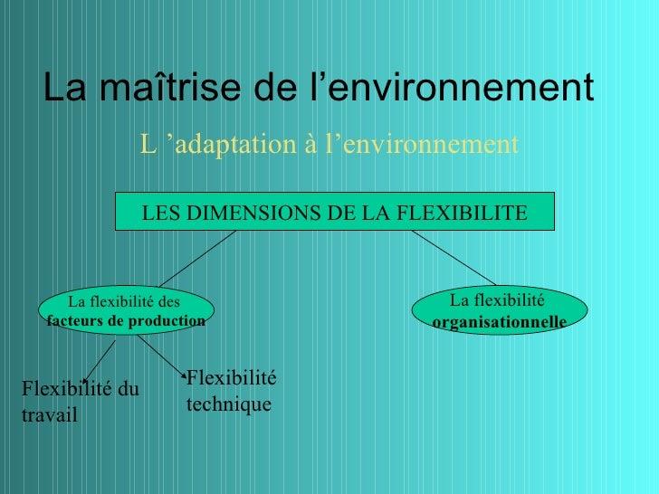 La maîtrise de l'environnement                 L 'adaptation à l'environnement                 LES DIMENSIONS DE LA FLEXIB...