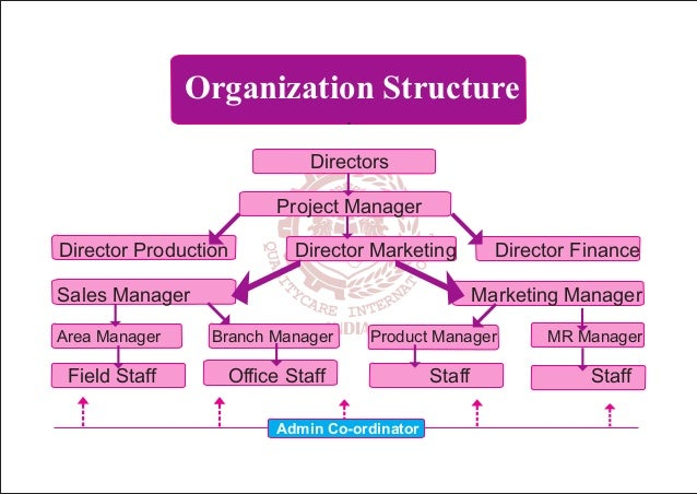 organizational structure of home depot The home depot uses a decentralized organizational structure while its corporate headquarters are in atlanta it has autonomous regional offices.