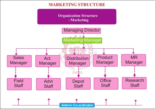 marketing structure In the 4 years that i am working for exact the size and structure of the marketing team changed quite often changing circumstances but also new.