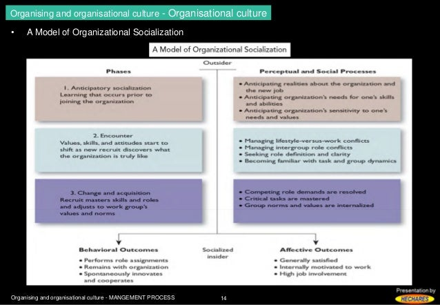 management process organisational process Because organizational transitions tend to be ambiguous and to need direction, special structures for managing the change process need to be created these management structures should include people who have the power to mobilize resources to promote change, the respect of the existing leadership and change advocates, and the interpersonal and .