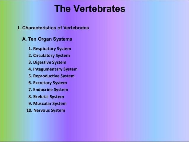 The Vertebrates I. Characteristics of Vertebrates A. Ten Organ Systems 1. Respiratory System 2. Circulatory System 3. Dige...