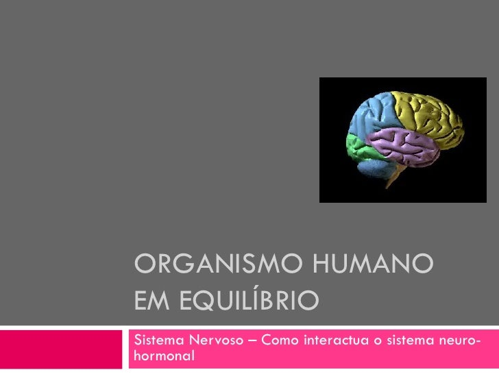 ORGANISMO HUMANO EM EQUILÍBRIO Sistema Nervoso – Como interactua o sistema neuro- hormonal