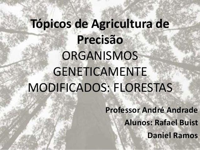 Tópicos de Agricultura de Precisão ORGANISMOS GENETICAMENTE MODIFICADOS: FLORESTAS Professor André Andrade Alunos: Rafael ...