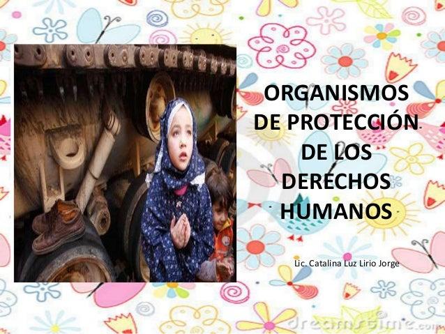 ORGANISMOS DE PROTECCIÓN DE LOS DERECHOS HUMANOS Lic. Catalina Luz Lirio Jorge