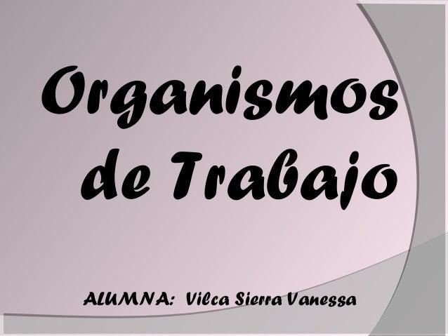 Organismos de Trabajo ALUMNA: Vilca Sierra Vanessa
