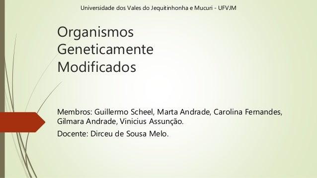 Organismos Geneticamente Modificados Membros: Guillermo Scheel, Marta Andrade, Carolina Fernandes, Gilmara Andrade, Vinici...