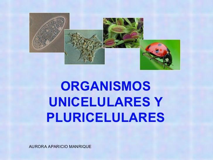 ORGANISMOS UNICELULARES Y PLURICELULARES AURORA APARICIO MANRIQUE
