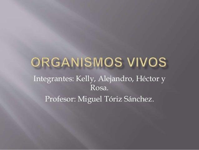 Integrantes: Kelly, Alejandro, Héctor y Rosa. Profesor: Miguel Tóriz Sánchez.