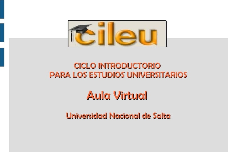 CICLO INTRODUCTORIO  PARA LOS ESTUDIOS UNIVERSITARIOS Aula Virtual  Universidad Nacional de Salta