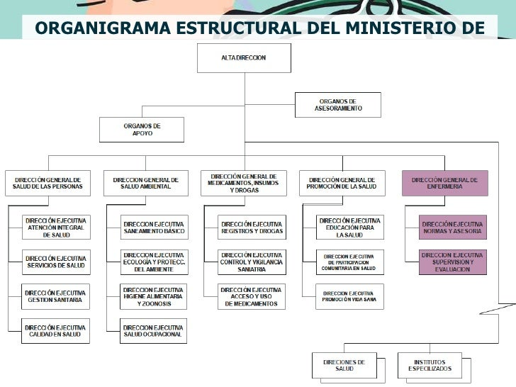 Organizaci n de salud y sistemas sanitarios en el peru for Estructura organica del ministerio del interior