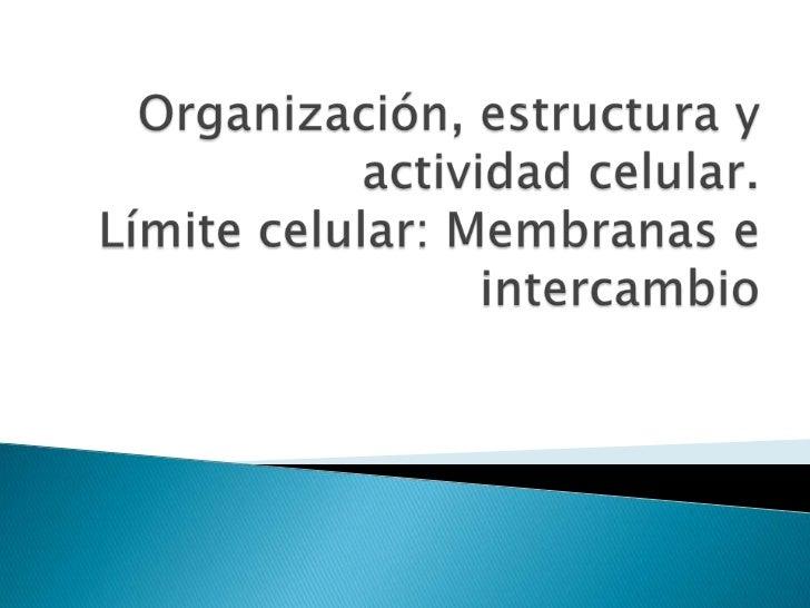 Organización, estructura y actividad celular.Límite celular: Membranas e intercambio<br />