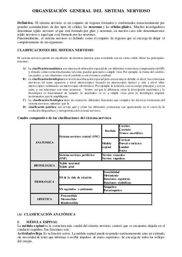 organizacin-general-del-sistema-nervioso-1-638.jpg?cb=1443305053