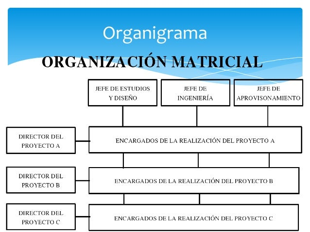 Organización Industrial Tipos De Estructura