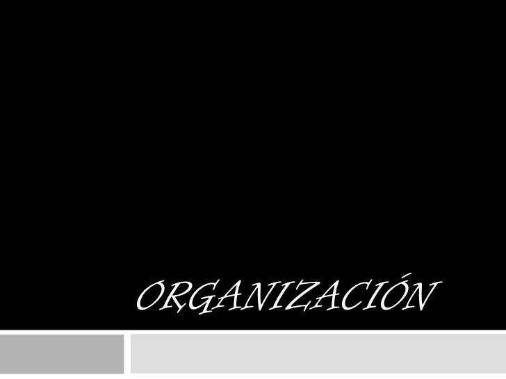 Organización <br />