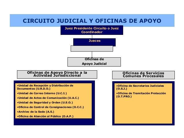 Circuito Judicial : Organizacion de los tribunales a nivel sistemático