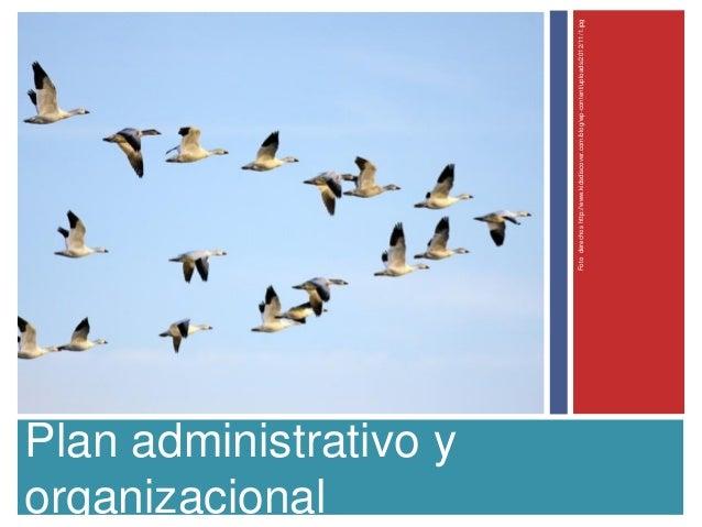 Plan administrativo yorganizacionalFotoderechoshttp://www.kidsdiscover.com/blog/wp-content/uploads/2012/11/1.jpg