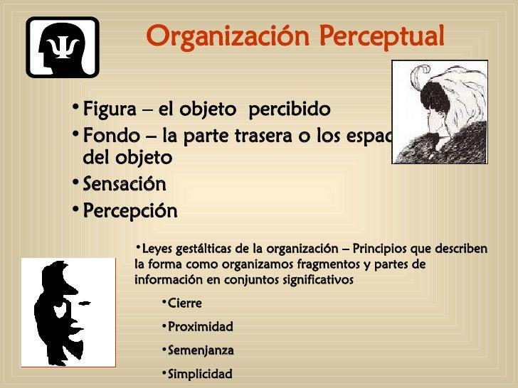 Organización Perceptual <ul><ul><ul><li>Figura – el objeto  percibido </li></ul></ul></ul><ul><ul><ul><li>Fondo – la parte...