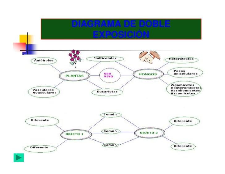 Organizadores graficos diagrama de doble exposicin ccuart Images