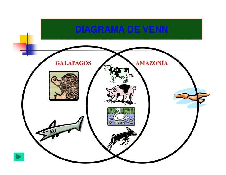 Organizadores graficos diagrama de venngalpagos amazona ccuart Choice Image