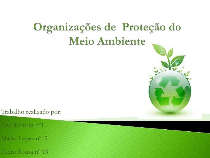 Trabalho realizado por:Ana Teixeira nº1Mário Lopes nº12Pedro Sousa nº 19