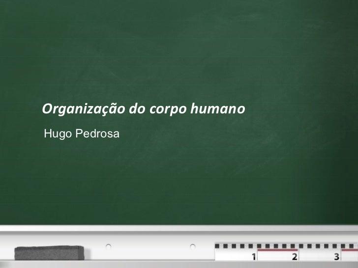 Organização do corpo humano Hugo Pedrosa