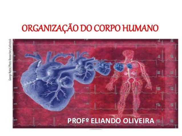 ORGANIZAÇÃO DO CORPO HUMANO PROFº ELIANDO OLIVEIRA