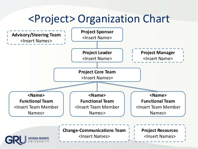 Organization Chart  Project Responsibilities