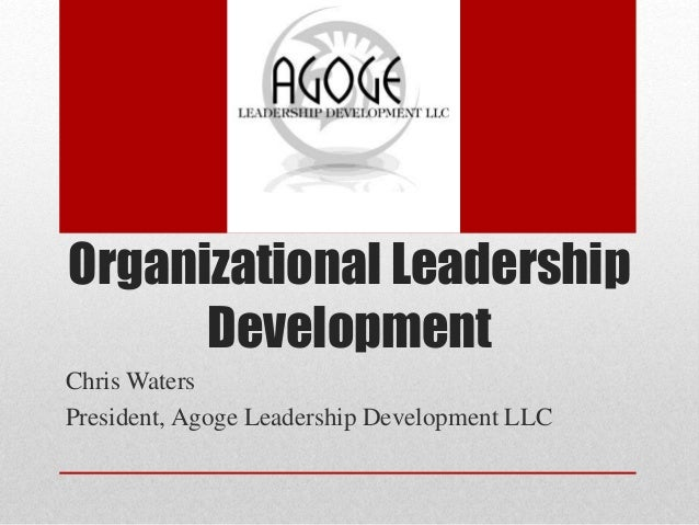 What Is Involved in Organizational Leadership Development?