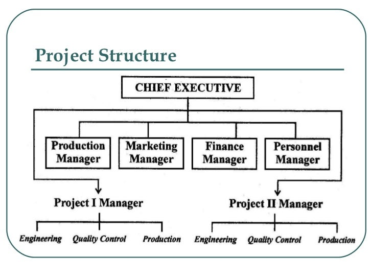 The Role of Organizational Structure in an Organization